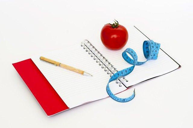 zapisování diety