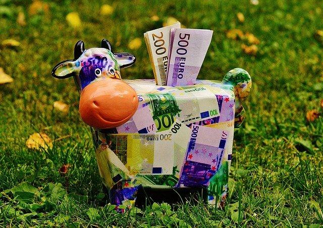 kráva jako pokladnička