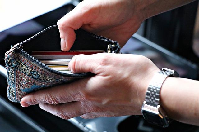 pohled do látkové peněženky